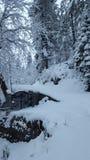 Coberto com o inverno de viagem de fascinação bonito do destino da beleza de Ásia Paquistão da neve Foto de Stock Royalty Free