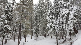 Coberto com o inverno de viagem de fascinação bonito do destino da beleza de Ásia Paquistão da neve Foto de Stock