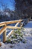 Coberto com a reserva de natureza da neve Fotografia de Stock Royalty Free