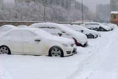 Coberto de neve os carros Foto de Stock