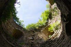 Coberto de vegetação com os arbustos e uma fortaleza de pedra velha de Koporye Fotografia de Stock Royalty Free