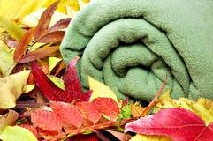 Cobertor do outono Imagem de Stock