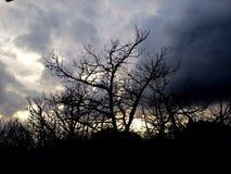Cobertura de la nube Fotos de archivo libres de regalías