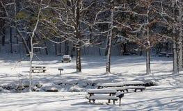Cobertura do inverno Fotografia de Stock Royalty Free