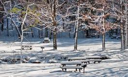 Cobertura nevado Imagens de Stock Royalty Free
