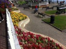 Cobh miasto Irlandia Fotografia Royalty Free
