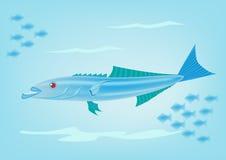 Cobiafisk stock illustrationer
