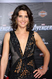 Cobie Smulders Royalty Free Stock Images