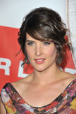 Cobie Smulders,The Used Royalty Free Stock Photo