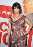 Cobie Smulders,The Used Royalty Free Stock Photos
