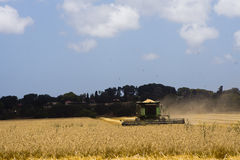 Cobine harvesting Wheat field Royalty Free Stock Photos