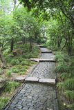 Coble stone Path. A coble stone path through a sacred garden in the Summer Palace, Beijing, China Stock Image