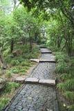 Coble stone Path Stock Image