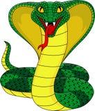 Cobra cartoon Stock Photos