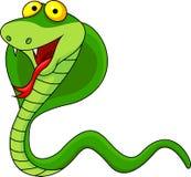 Cobra cartoon Stock Images