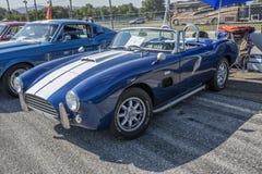 Cobra de la CA Foto de archivo libre de regalías