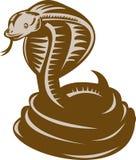 Cobra de rey enrollada alrededor a la huelga stock de ilustración