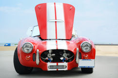 Cobra de Shelby Image libre de droits
