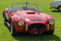 Cobra del classico 427 Immagini Stock