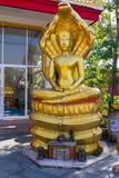 Cobra di Buddha Fotografie Stock