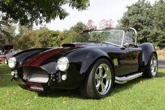 Cobra di Shelby all'arboreto di Los Angeles Immagine Stock