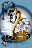 Cobra en schedel Stock Foto's