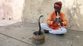 Cobra enchanter, snake charming Royalty Free Stock Images