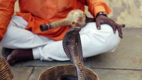 Cobra enchanter, snake charming Stock Image