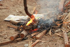 Cobra grill. The cobra burn in the fire to remove the gail Stock Photography