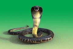 cobra real 3d Imagen de archivo libre de regalías