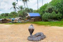 Cobra real en la naturaleza salvaje Foto de archivo