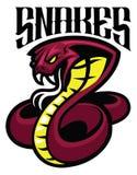 Cobra snake mascot Stock Images