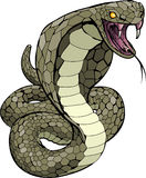 Cobra snake about to strike Stock Photo