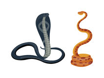 Cobra snake vector Royalty Free Stock Photos