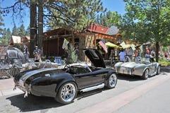 Cobras rápidas & furiosos Imagem de Stock Royalty Free