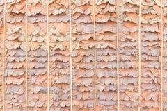 Cobrir com sapê do telhado (ou cerca) usando a floresta saem Foto de Stock Royalty Free