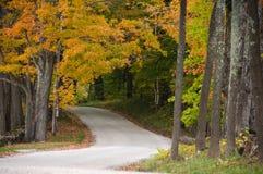 Cobrir a estrada através das madeiras do outono imagens de stock royalty free
