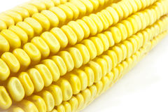 Cobs and corn. Beans and corn cobs  in a white background Royalty Free Stock Photography
