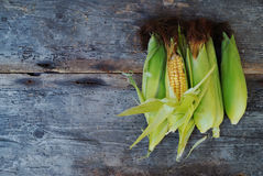 Cobs fresh corn on old wooden surface Stock Images