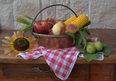 Cobs and fruit Royalty Free Stock Images