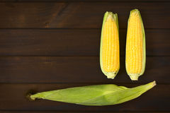 Cobs of Sweet Corn. Overhead shot of cobs of sweet corn with husk and two without husk photographed on dark wood with natural light Stock Photo