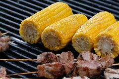 Corn and meat royalty free stock photos