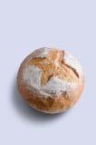 Coburn玉米棒大面包 图库摄影