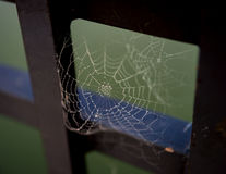 Cobweb on bridge Stock Image