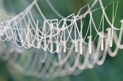 Cobweb covered with morning dew Royalty Free Stock Photography
