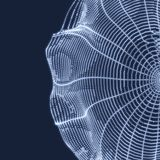 Cobweb Denna är mappen av formatet EPS10 Anslutningsstruktur stil för teknologi 3D också vektor för coreldrawillustration vektor illustrationer