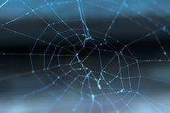 Cobweb with dew drops Stock Photo