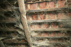 Cobweb in old roof Stock Photography