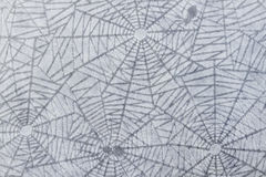 Cobweb pattern Royalty Free Stock Photography