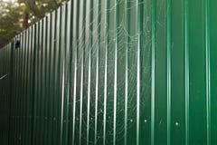 Cobweb in the rain Royalty Free Stock Image